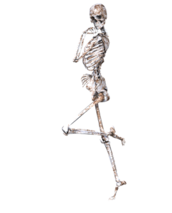 Do you keep your bones strong & listen to your body?