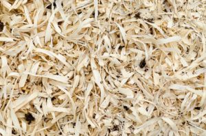 did you ever think of composting sawdust? You can.
